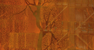 Fachada bosque-02